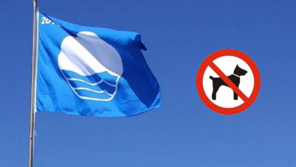 Las playas Bandera Azul no son pet friendly