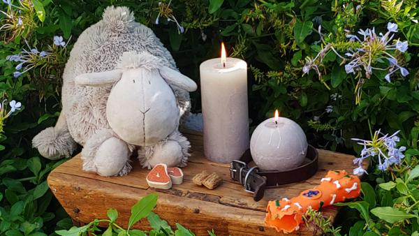 Día 1 de noviembre, ceremonia homenaje a nuestros seres queridos