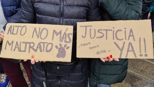 Cientos de personas piden el endurecimiento de las leyes ante el maltrato animal