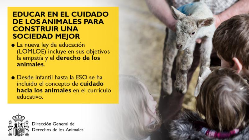La nueva Ley de Educación (LOMLOE) incluye en sus objetivos la empatía y el derecho de los animales