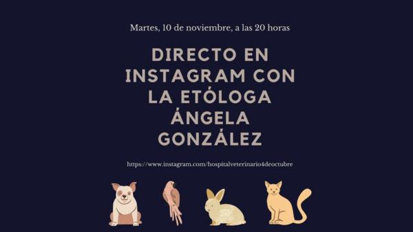 Día 10 de noviembre «El lenguaje de nuestros perros»
