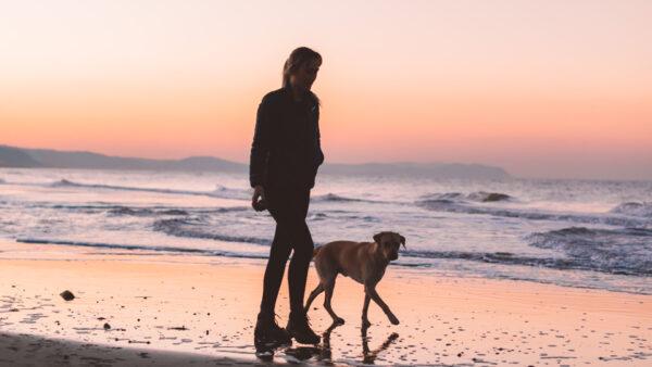 Arteixo, una buena opción para que nuestros perros disfruten de la playa en verano