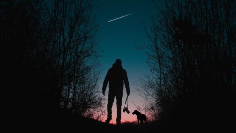 Las Perseidas con tu perro