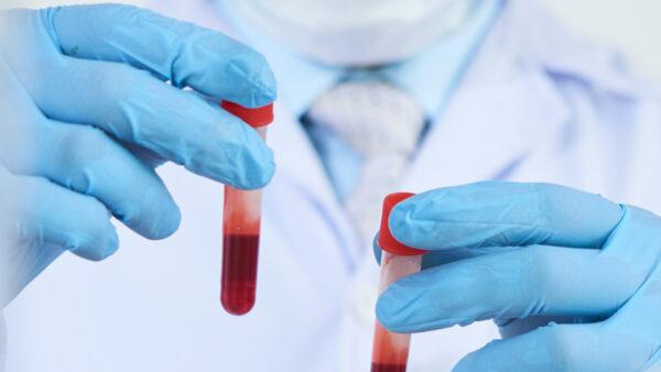 Los test de sangre del perro de Hong Kong en cuarentena por coronavirus dan negativo