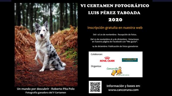 VI edición del concurso fotográfico Luis Pérez Taboada